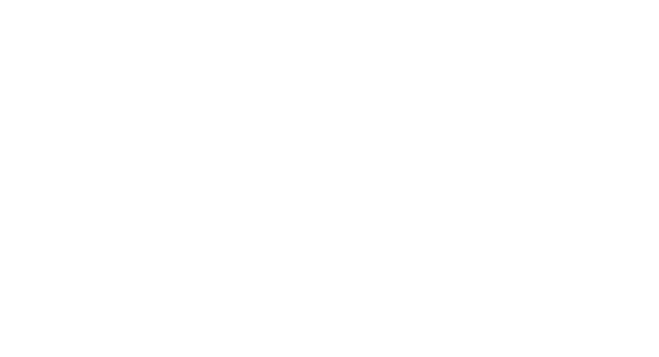 Save Society Europe
